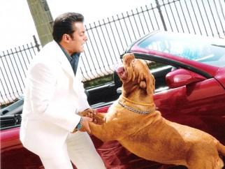 Movie Still From The Film Partner Featuring Salman Khan