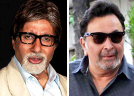 Two new faces to play young Big B and Rishi in Mehrunissa