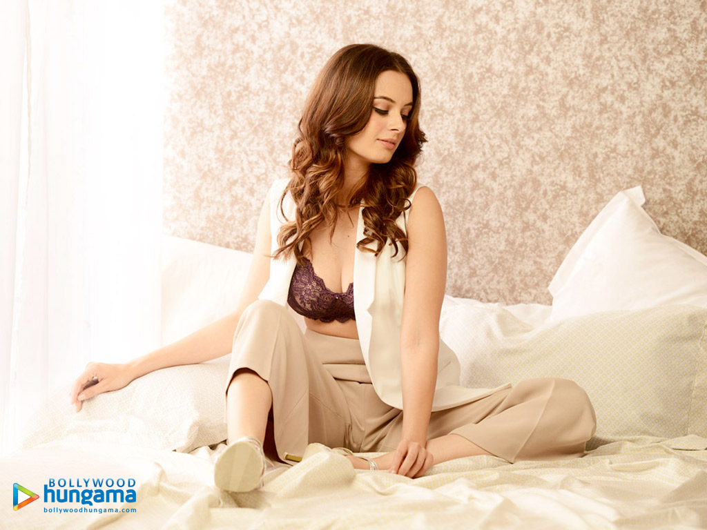 Evelyn Sharma 5 wallpapers (83 Wallpapers) - HD Wallpapers