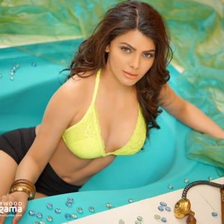 Celeb Wallpapers Of Sherlyn Chopra
