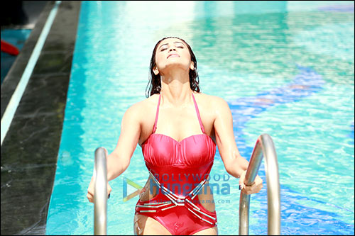Check out: Daisy Shah, Karan Singh Grover steam it up in Hate Story 3