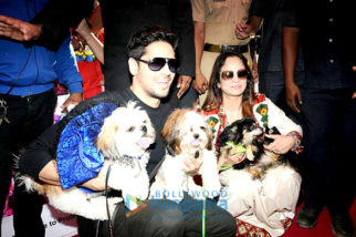 Sidharth Malhotra graces 'Glam Dogs' event in Mumbai