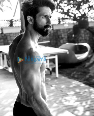 Celebrity Photos of Shahid Kapoor
