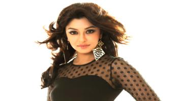 Celebrity Photos of Payal Ghosh