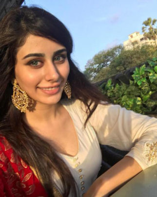 Here is everything you need to know about Salman Khan's leading lady Warina the Loveratri