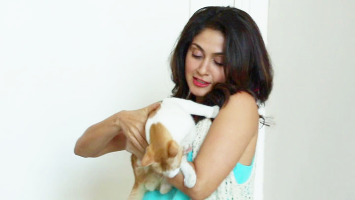 Manjari Fadnis & Her ADORABLE Cats!!!