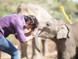 Vidyut Jammwal witnessed baby elephant's coming of age