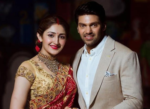 After Kaappaan, newlyweds Arya and Sayyeshaa to return to the big screen with Teddy