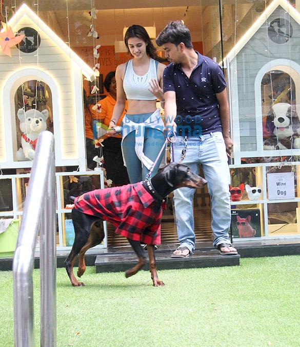 Disha Patani snapped at a pet shop in Bandra