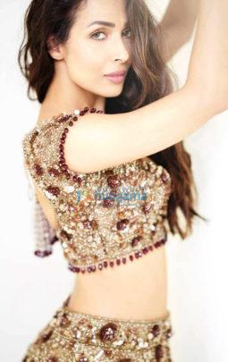 Celebrity Photo Of Malaika Arora