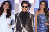 Celebs grace Star Screen Awards 2019 Part (10)