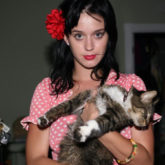 Katy Perry mourns the death of her beloved cat, Kitty Purry