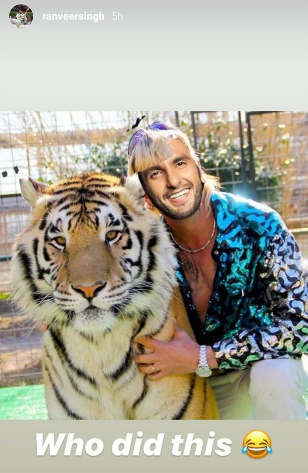 Ranveer Singh is the new Joe Exotic as he shares Tiger King meme on Instagram
