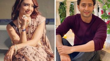 Shaheer Sheikh has a fan in Kasautii Zindagii Kay's Pooja Banerjee, find out how