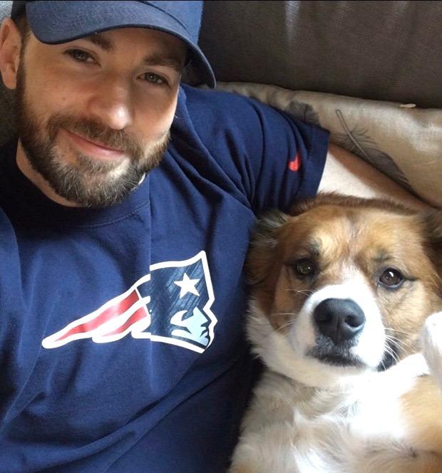 Chris Evans fails at grooming his dog Dodger, says it went so wrong, so fast thumbnail