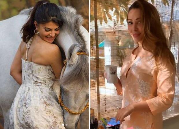 Inside Salman Khan's Panvel farmhouse with Jacqueline Fernandez and Iulia Vantur