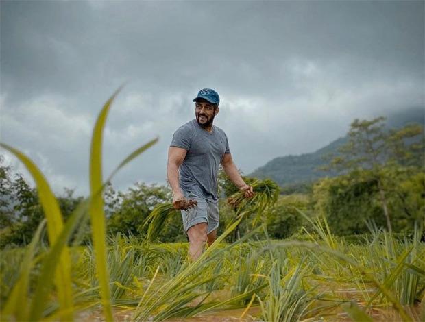 Lockdown Diaries, Salman Khan Takes To Farming