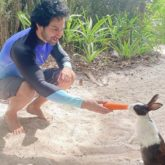 Varun Dhawan makes a new furry friend on his trip to Maldives