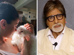 Alia Bhatt shares a picture with her muse; Amitabh Bachchan comments 'he does not like cats and that it will upset many ladies'