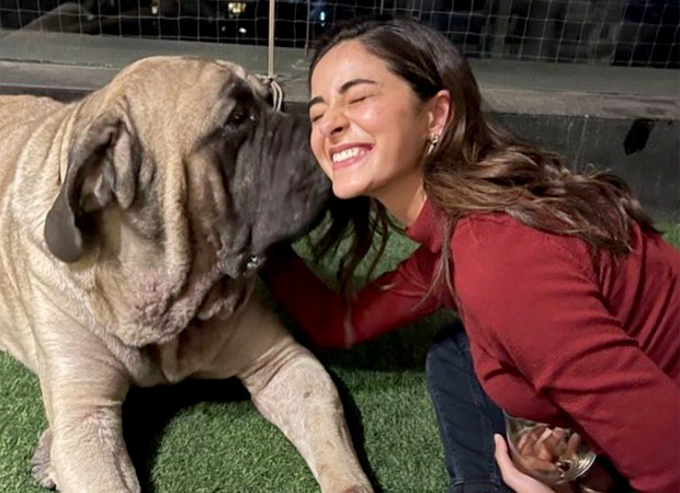 Alia Bhatt captures a candid moment of Ananya Panday as she plays with Ranbir Kapoor's pug