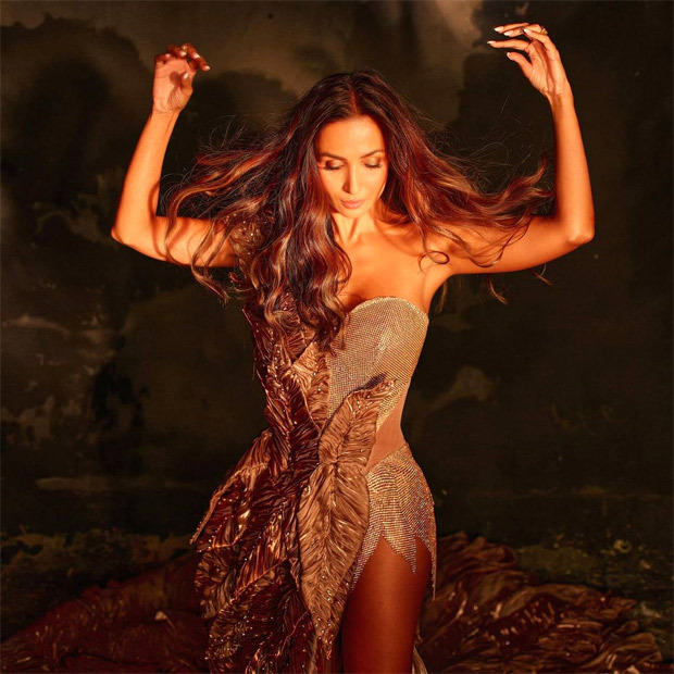Malaika Arora sets internet ablaze in leafy golden gown for Super Model of the Year 2